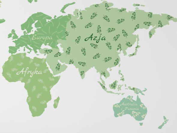 Naklejka na ścianę mapa zielona