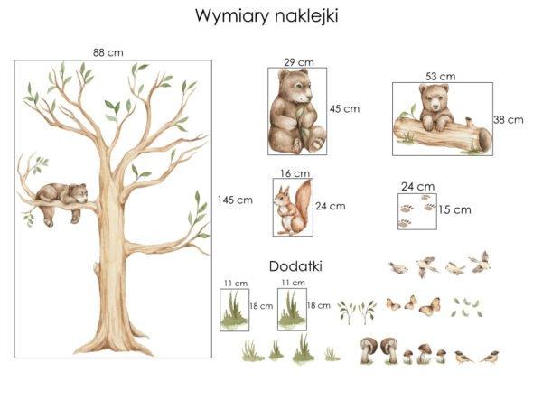 leśne zwierzęta na ścianę