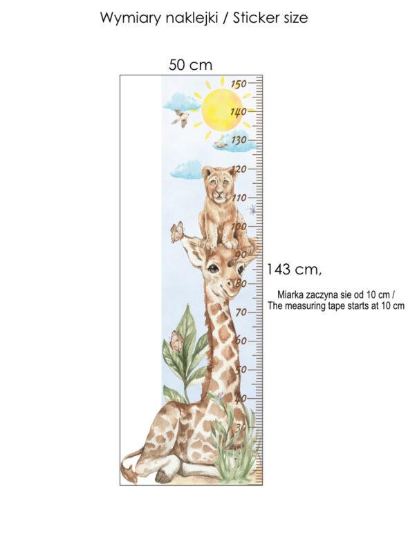 Miarka wzrostu z żyrafą safari